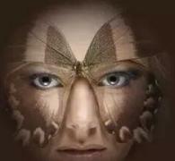 蝴蝶斑疾患形成的处理办法应正确的相关图片